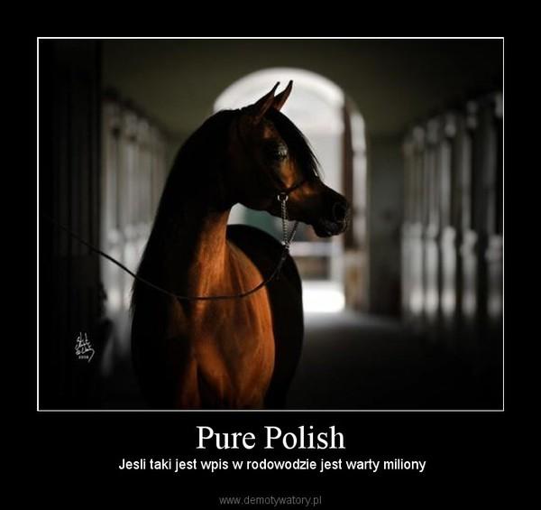 Pure Polish –  Jesli taki jest wpis w rodowodzie jest warty miliony