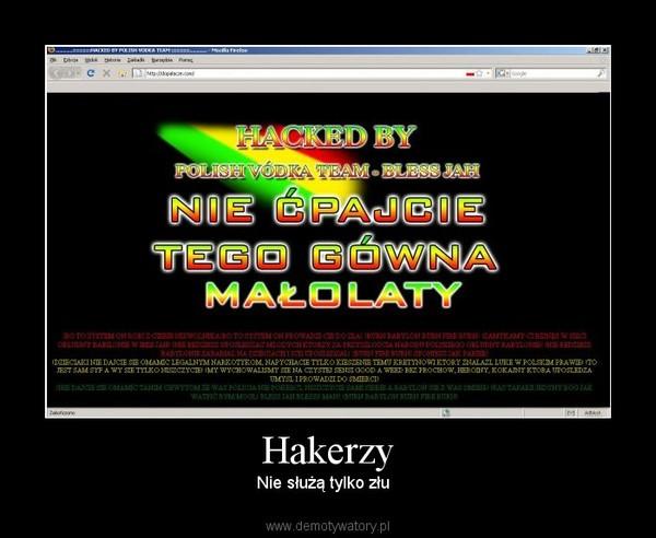 Hakerzy – Nie służą tylko złu