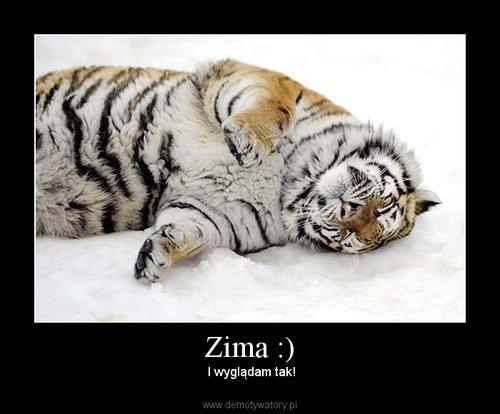 Zima :)