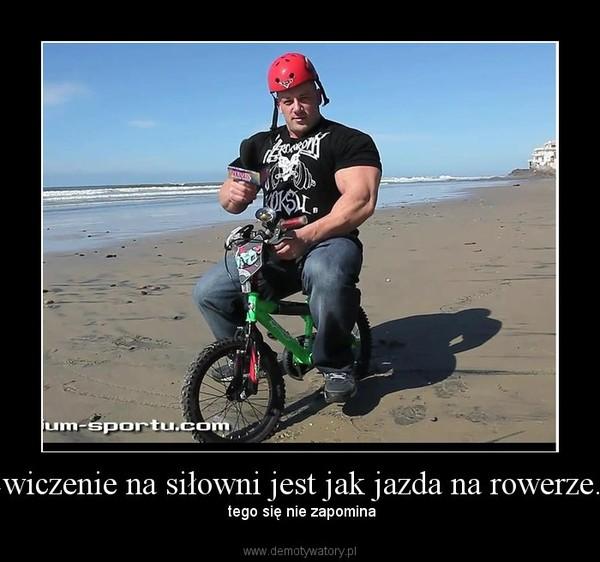 Ćwiczenie na siłowni jest jak jazda na rowerze... – tego się nie zapomina