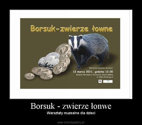 Borsuk - zwierze łonwe