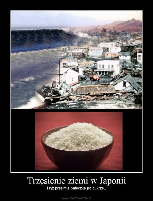 Trzęsienie ziemi w Japonii – I ryż przejmie pałeczkę po cukrze..