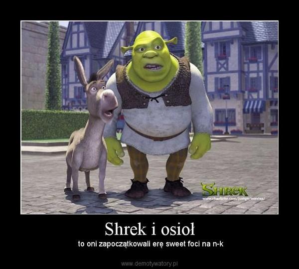 Shrek i osioł – to oni zapoczątkowali erę sweet foci na n-k