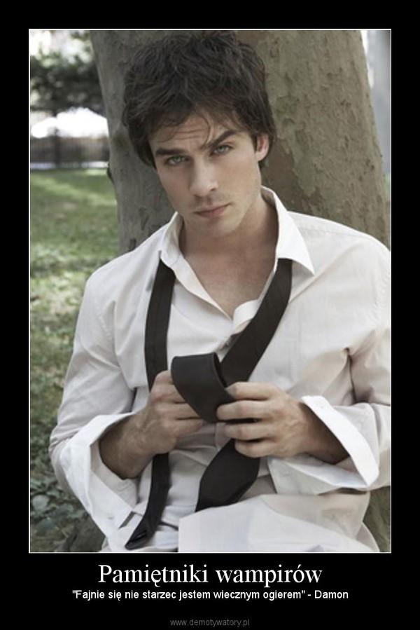 """Pamiętniki wampirów – """"Fajnie się nie starzec jestem wiecznym ogierem"""" - Damon"""