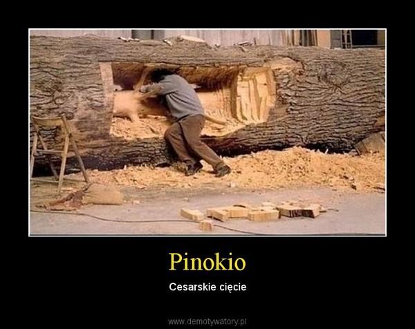 Pinokio – Cesarskie cięcie