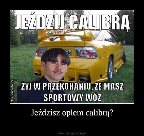 Jeździsz oplem calibrą?