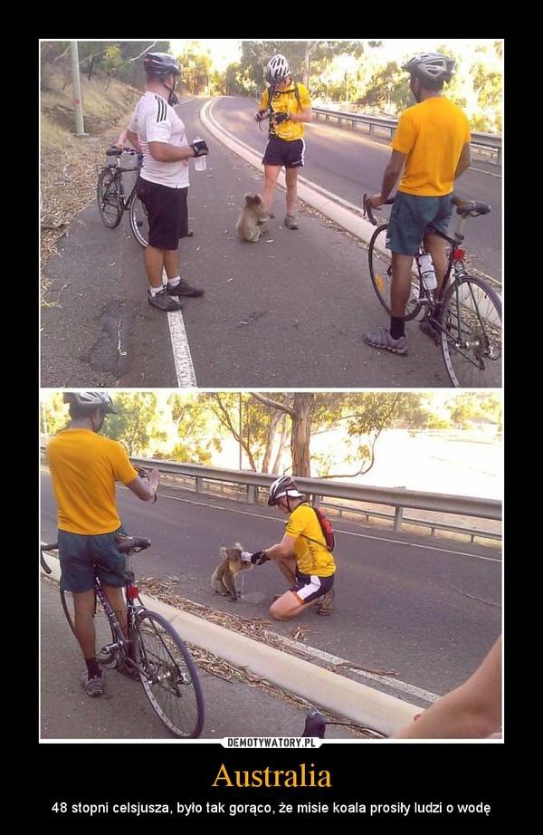 Australia – 48 stopni celsjusza, było tak gorąco, że misie koala prosiły ludzi o wodę