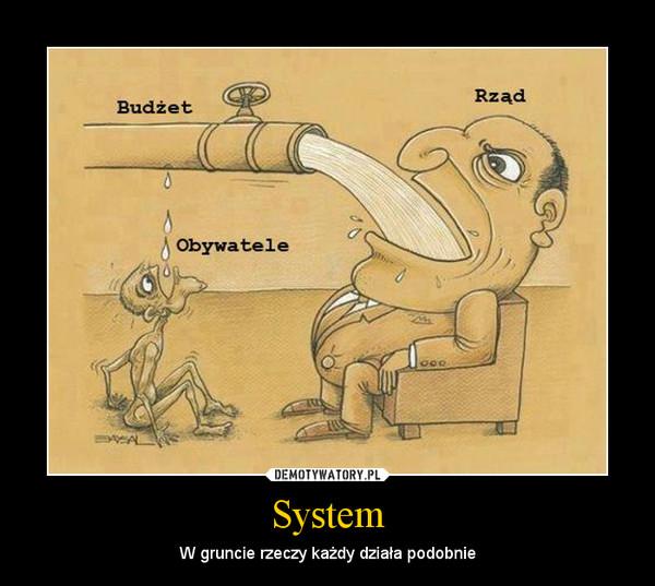 System – W gruncie rzeczy każdy działa podobnie