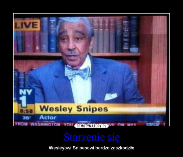 Starzenie się – Wesleyowi Snipesowi bardzo zaszkodziło
