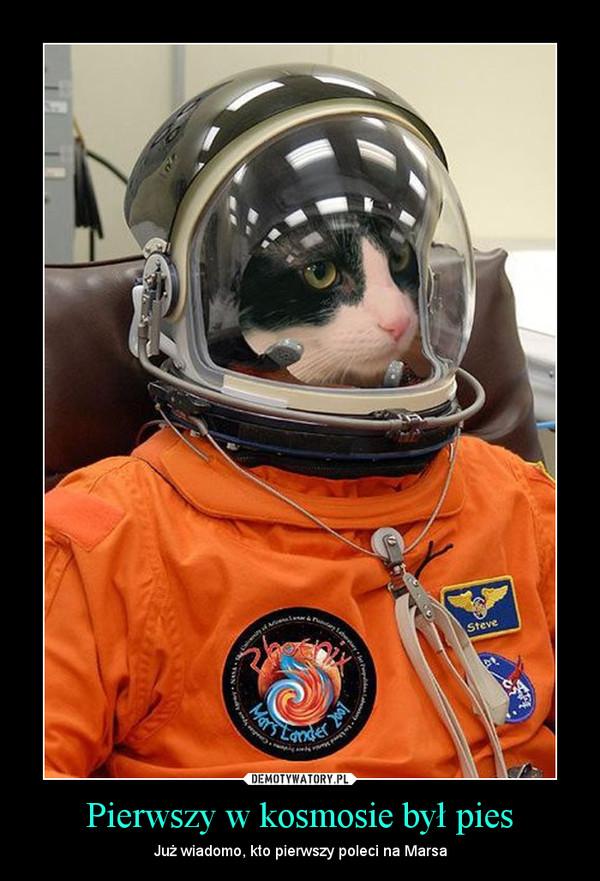 Pierwszy w kosmosie był pies – Już wiadomo, kto pierwszy poleci na Marsa