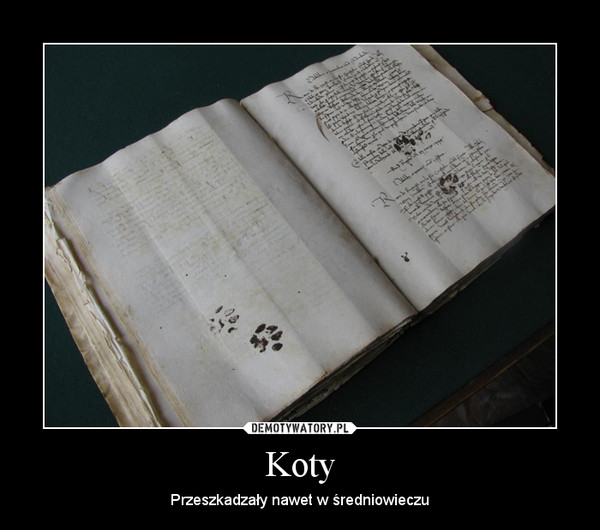 Koty – Przeszkadzały nawet w średniowieczu