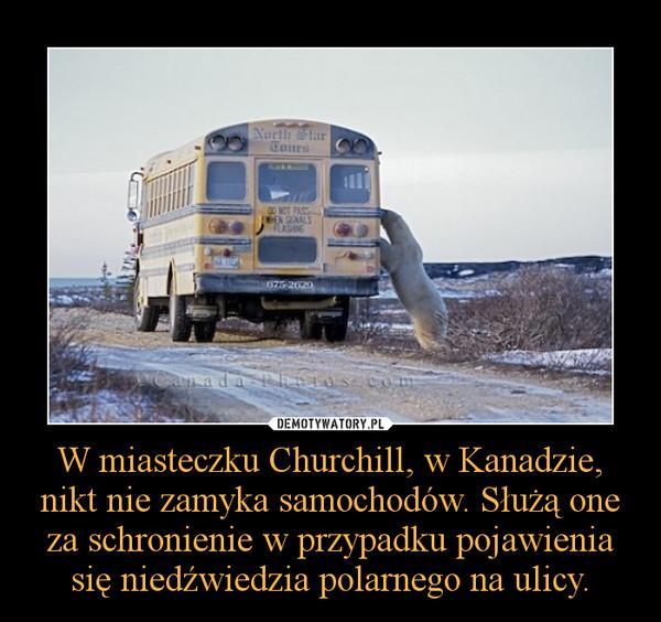 W miasteczku Churchill, w Kanadzie, nikt nie zamyka samochodów. Służą one za schronienie w przypadku pojawienia się niedźwiedzia polarnego na ulicy. –