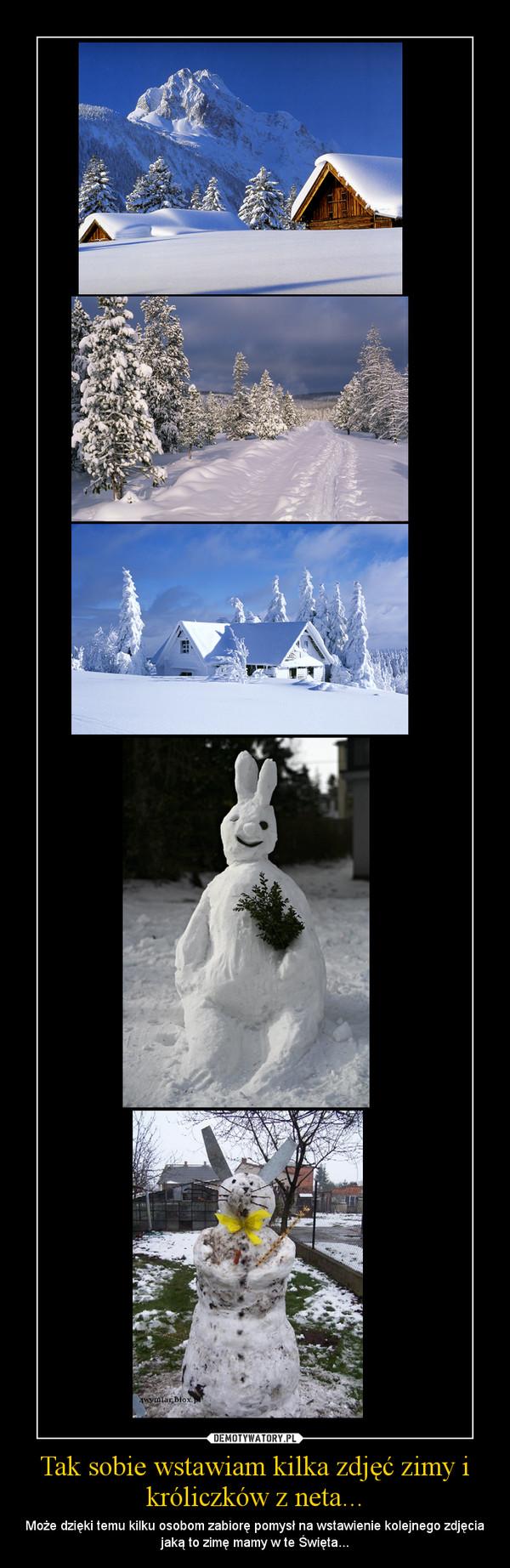 Tak sobie wstawiam kilka zdjęć zimy i króliczków z neta... – Może dzięki temu kilku osobom zabiorę pomysł na wstawienie kolejnego zdjęcia jaką to zimę mamy w te Święta...