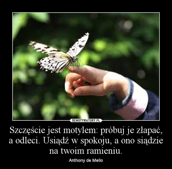Szczęście jest motylem: próbuj je złapać, a odleci. Usiądź w spokoju, a ono siądzie na twoim ramieniu. – Anthony de Mello