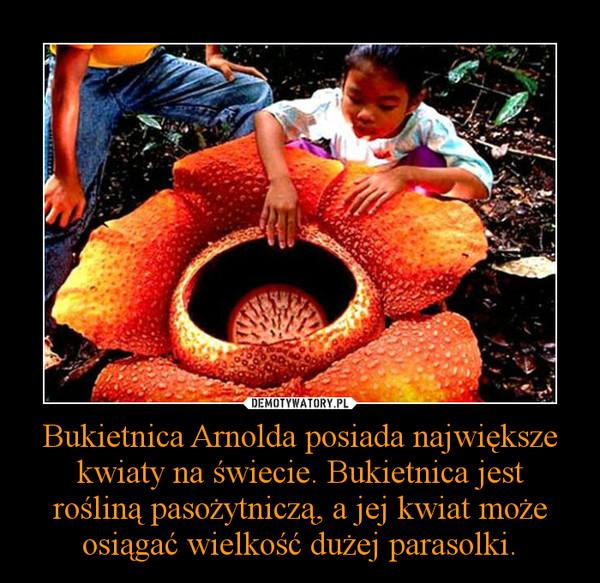 Bukietnica Arnolda posiada największe kwiaty na świecie. Bukietnica jest rośliną pasożytniczą, a jej kwiat może osiągać wielkość dużej parasolki. –