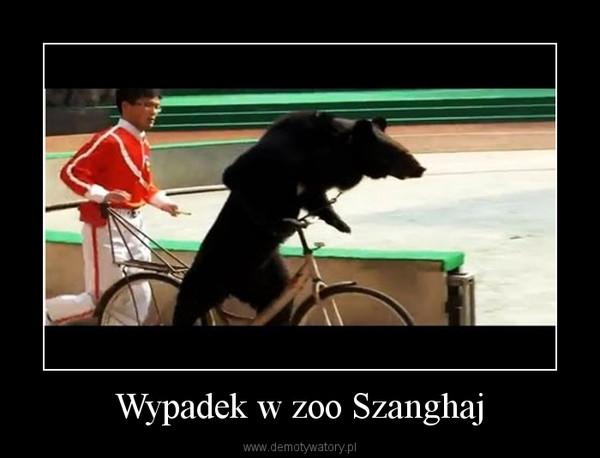 Wypadek w zoo Szanghaj –