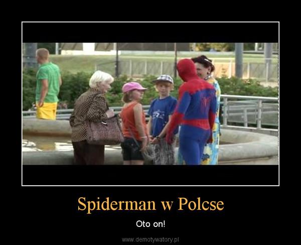 Spiderman w Polcse – Oto on!