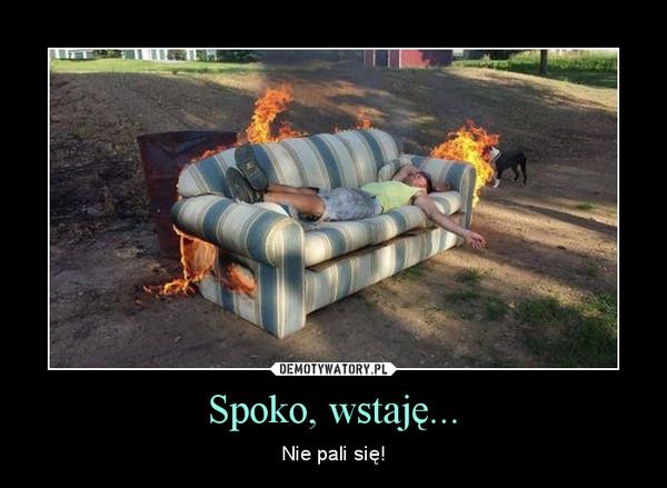 Spoko, wstaję... – Nie pali się!