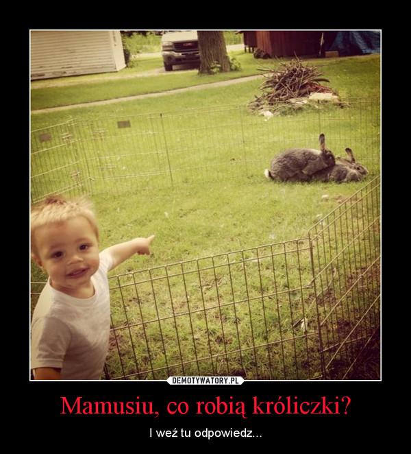 Mamusiu, co robią króliczki? – I weź tu odpowiedz...
