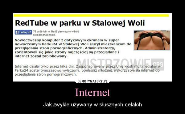 Internet – Jak zwykle używany w słusznych celalch