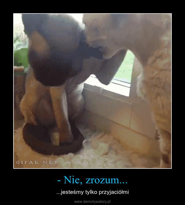 - Nie, zrozum... – ...jesteśmy tylko przyjaciółmi