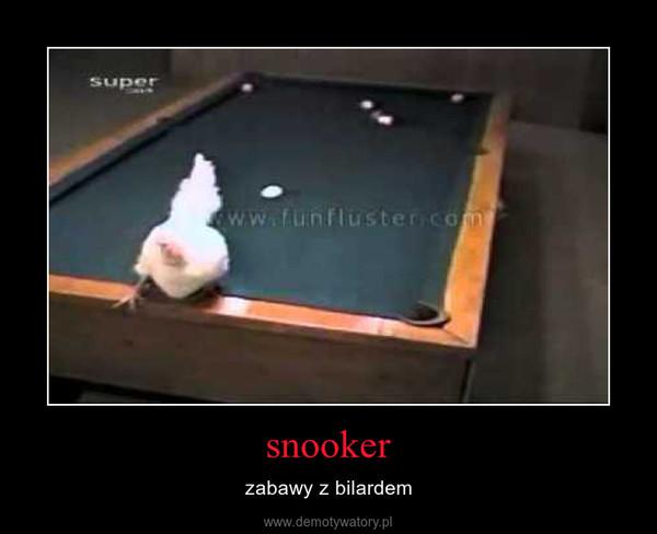 snooker – zabawy z bilardem