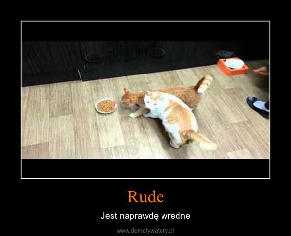 Rude – Jest naprawdę wredne