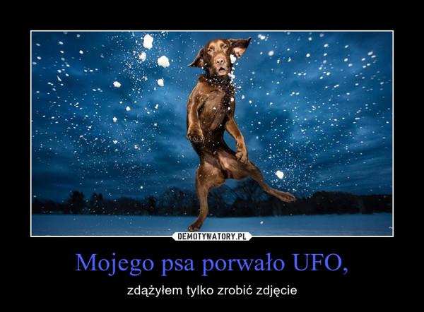 Mojego psa porwało UFO, – zdążyłem tylko zrobić zdjęcie