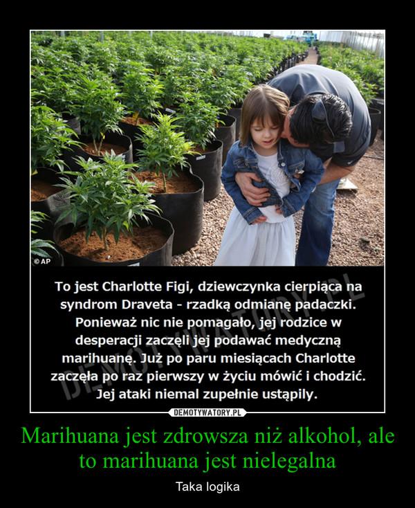 Marihuana jest zdrowsza niż alkohol, ale to marihuana jest nielegalna – Taka logika