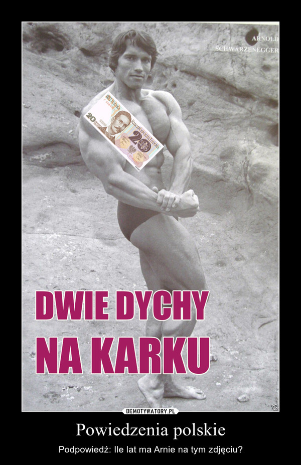Powiedzenia polskie – Podpowiedź: Ile lat ma Arnie na tym zdjęciu?