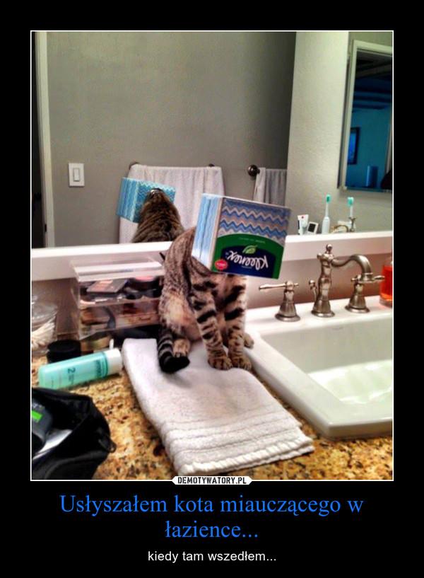 Usłyszałem kota miauczącego w łazience... – kiedy tam wszedłem...