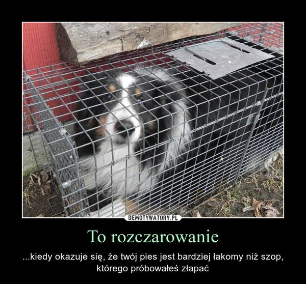 To rozczarowanie – ...kiedy okazuje się, że twój pies jest bardziej łakomy niż szop, którego próbowałeś złapać