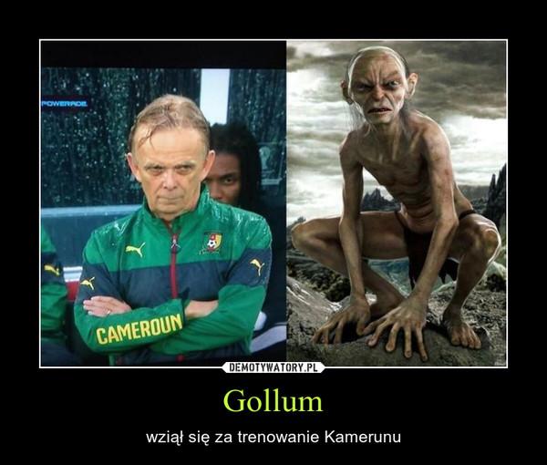 Gollum – wziął się za trenowanie Kamerunu