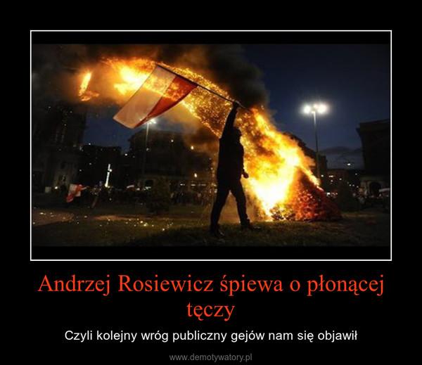 Andrzej Rosiewicz śpiewa o płonącej tęczy – Czyli kolejny wróg publiczny gejów nam się objawił