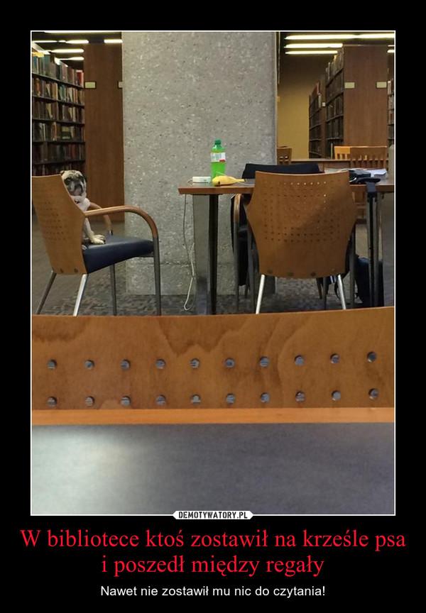 W bibliotece ktoś zostawił na krześle psa i poszedł między regały – Nawet nie zostawił mu nic do czytania!