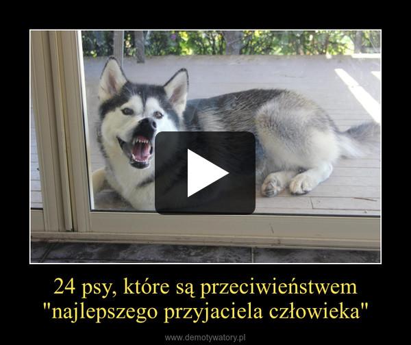 """24 psy, które są przeciwieństwem """"najlepszego przyjaciela człowieka"""" –"""