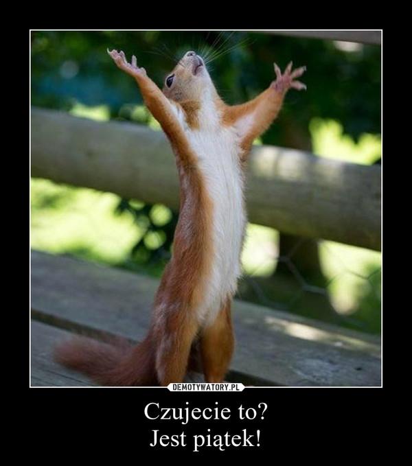 Czujecie to? Jest piątek! –