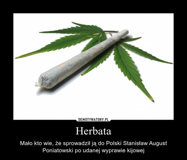 Herbata – Mało kto wie, że sprowadził ją do Polski Stanisław August Poniatowski po udanej wyprawie kijowej