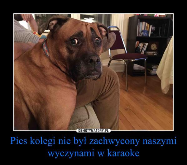 Pies kolegi nie był zachwycony naszymi wyczynami w karaoke –