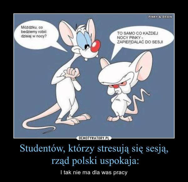 Studentów, którzy stresują się sesją, rząd polski uspokaja: – I tak nie ma dla was pracy