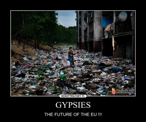 GYPSIES – THE FUTURE OF THE EU !!!