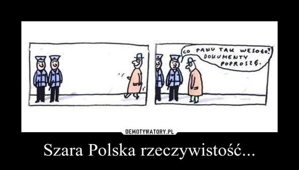 Szara Polska rzeczywistość... –