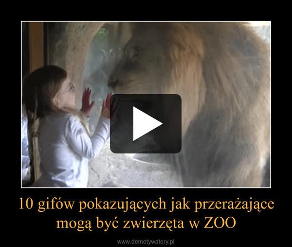 10 gifów pokazujących jak przerażające mogą być zwierzęta w ZOO –
