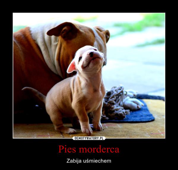 Pies morderca – Zabija uśmiechem