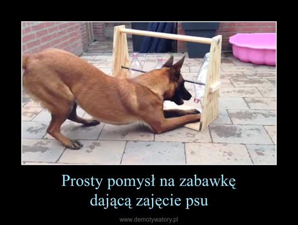 Prosty pomysł na zabawkędającą zajęcie psu –