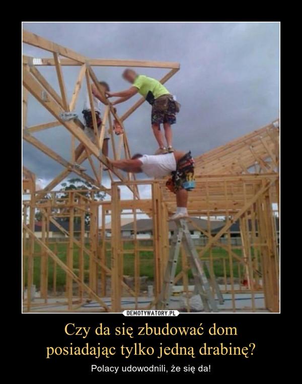 Czy da się zbudować domposiadając tylko jedną drabinę? – Polacy udowodnili, że się da!