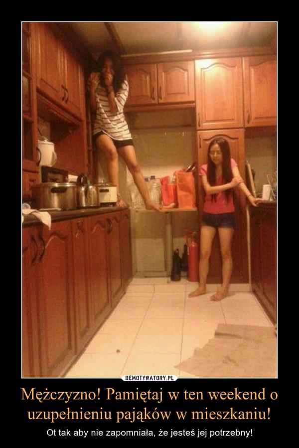 Mężczyzno! Pamiętaj w ten weekend o uzupełnieniu pająków w mieszkaniu! – Ot tak aby nie zapomniała, że jesteś jej potrzebny!