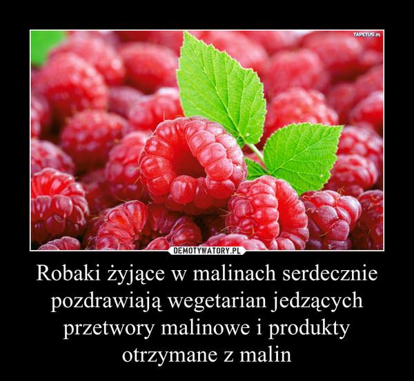 Robaki żyjące w malinach serdecznie pozdrawiają wegetarian jedzących przetwory malinowe i produkty otrzymane z malin –