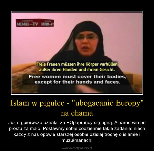 """Islam w pigułce - """"ubogacanie Europy"""" na chama – Już są pierwsze oznaki, że POpaprańcy się ugną. A naród wie po prostu za mało. Postawmy sobie codziennie takie zadanie: niech każdy z nas opowie starszej osobie dzisiaj trochę o islamie i muzułmanach."""