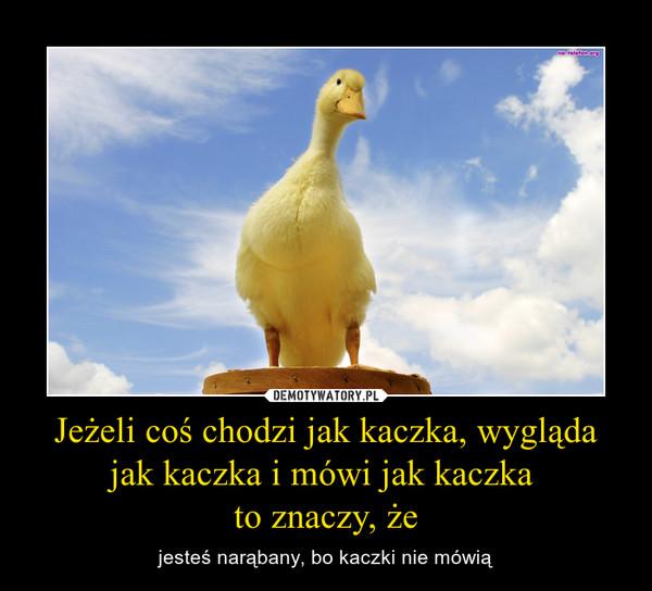 Jeżeli coś chodzi jak kaczka, wygląda jak kaczka i mówi jak kaczka to znaczy, że – jesteś narąbany, bo kaczki nie mówią